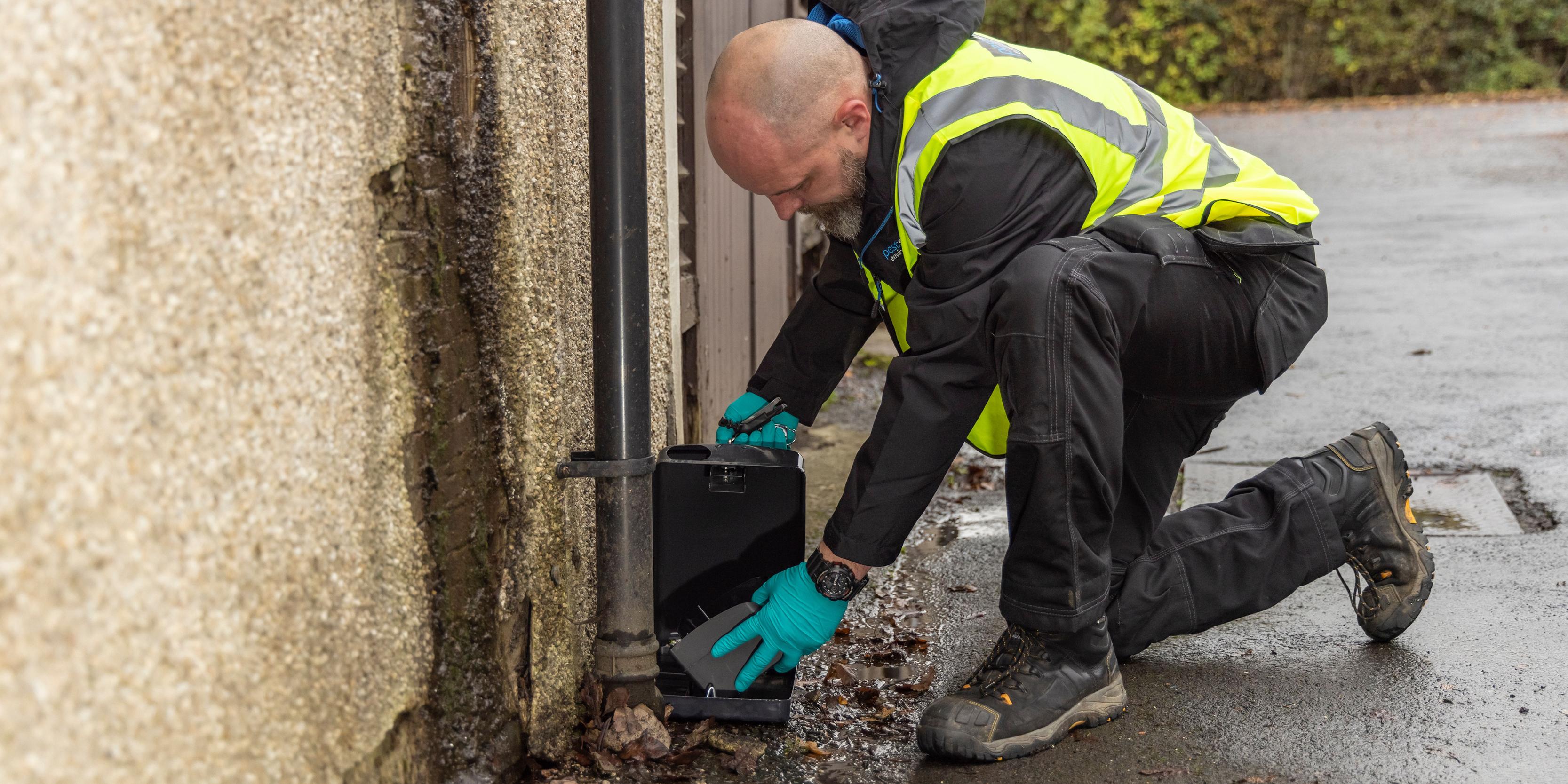 Glasgow Scotland Pest Solutions