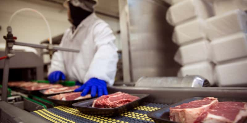 Tesco Food Manufacturing Standard (TFMS) - Pest Control